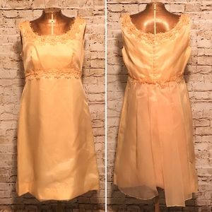 Vintage 1960s Sheer peach Appliqué Dress